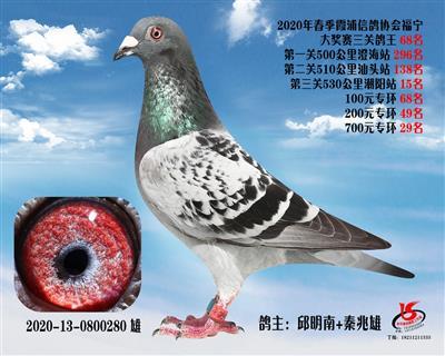 霞浦���f三�P��王68名