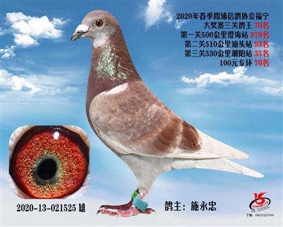 霞浦���f三�P��王70名