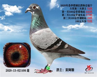 霞浦���f三�P��王72名