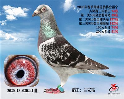 霞浦���f三�P��王74名