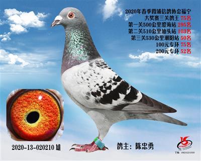 霞浦���f三�P��王75名