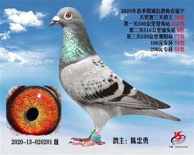 霞浦���f三�P��王76名
