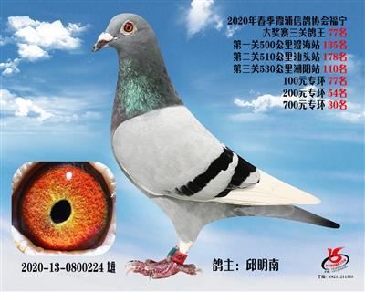 霞浦���f三�P��王77名