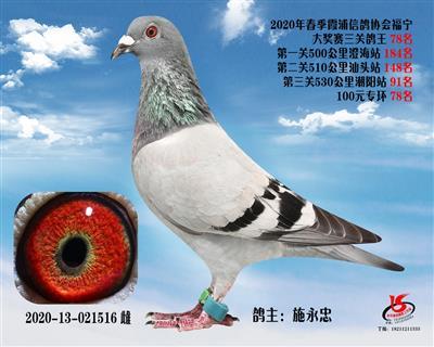 霞浦���f三�P��王78名