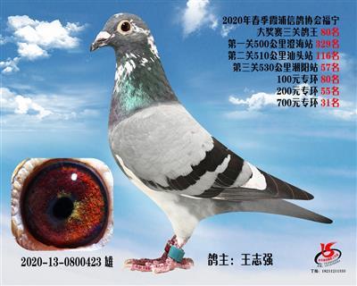 霞浦���f三�P��王80名