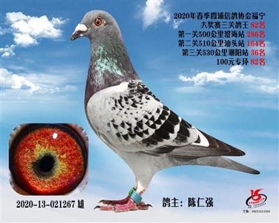 霞浦���f三�P��王82名