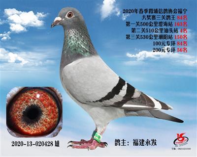 霞浦���f三�P��王84名
