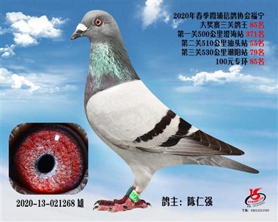 霞浦���f三�P��王85名