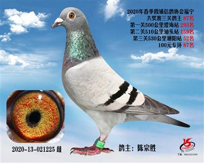霞浦���f三�P��王87名