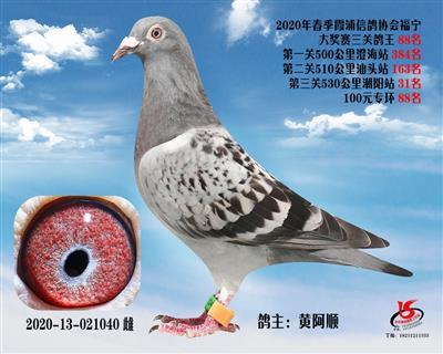 霞浦���f三�P��王88名