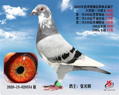 霞浦���f三�P��王90名