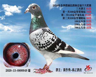 霞浦���f三�P��王91名