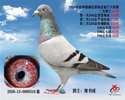 霞浦���f三�P��王94名