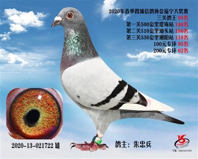 霞浦���f三�P��王95名