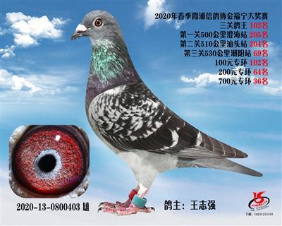 霞浦���f三�P��王102名