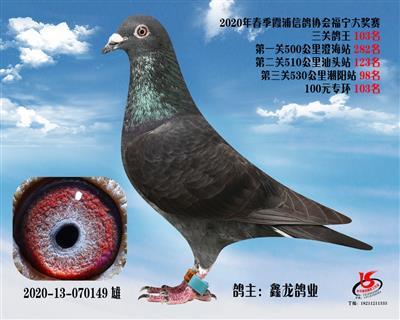 霞浦���f三�P��王103名