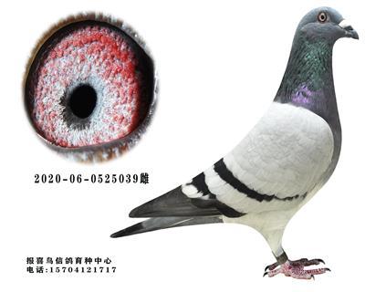 桑杰士-金童玉女039