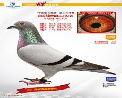 江�K�y石四�P��王202名
