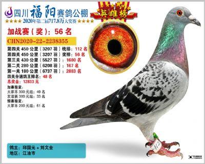 四川福阳四关加站赛112名