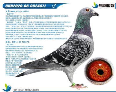 噶斯�D-古瓦特671