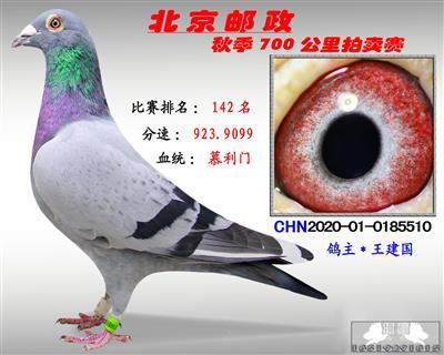 北京�]政秋季700公里拍�u�*第142名*