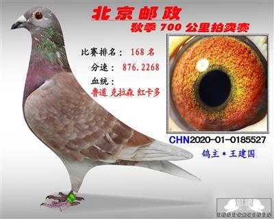 北京�]政秋季700公里拍�u� *第168名*