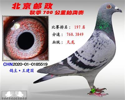 北京�]政秋季700公里拍�u� *第197名*