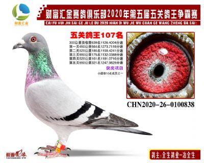 �富�R金五�P��王107名
