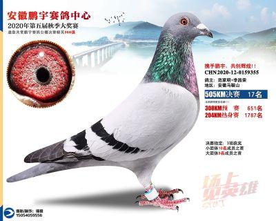 安徽�i宇�Q�17名