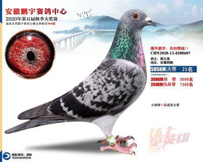 安徽�i宇�Q�25名