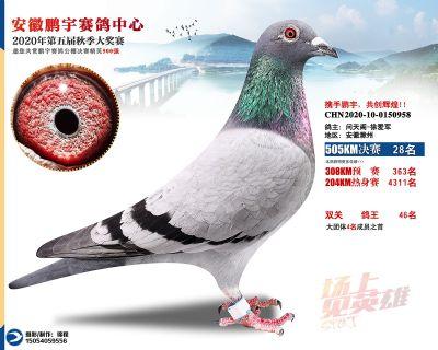 安徽�i宇�Q�28名