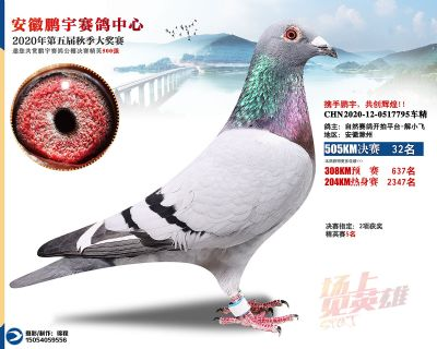 安徽�i宇�Q�32名