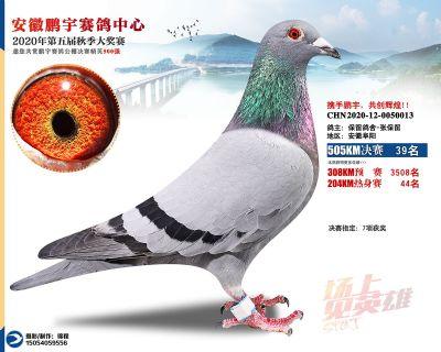安徽�i宇�Q�39名