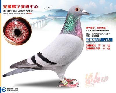 安徽�i宇�Q�38名