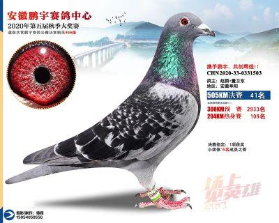 安徽�i宇�Q�41名