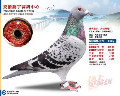 安徽�i宇�Q�43名