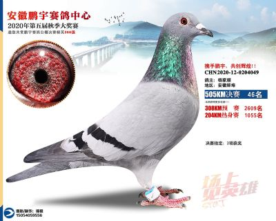 安徽�i宇�Q�46名