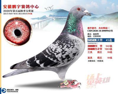 安徽�i宇�Q�45名
