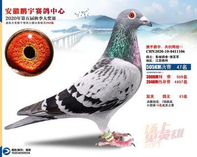 安徽�i宇�Q�47名