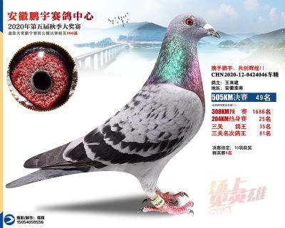 安徽�i宇�Q�49名