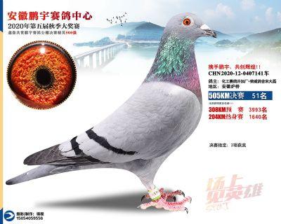 安徽�i宇�Q�51名