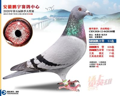 安徽�i宇�Q�53名