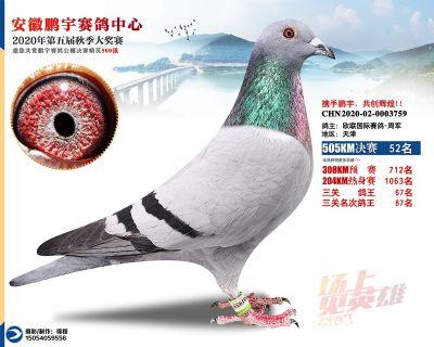 安徽�i宇�Q�52名