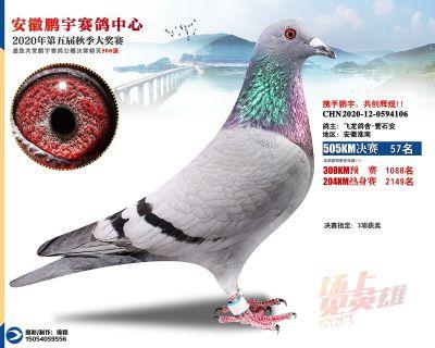 安徽�i宇�Q�57名