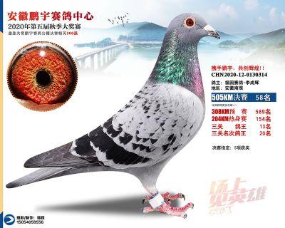 安徽�i宇�Q�58名
