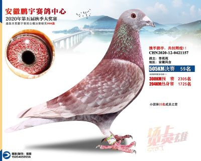 安徽�i宇�Q�59名