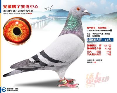 安徽�i宇�Q�62名