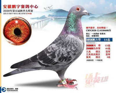 安徽�i宇�Q�64名