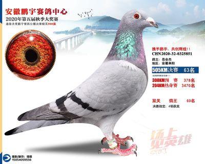 安徽�i宇�Q�63名