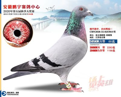 安徽�i宇�Q�66名